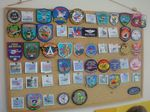 Squadron Patch collection.jpg